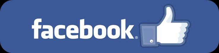 facebook-likes(1)