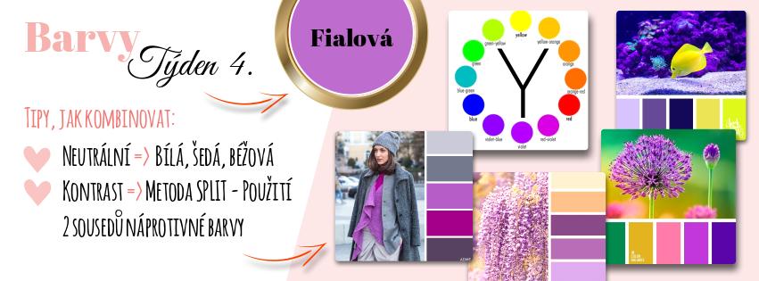 farby T4 fialová